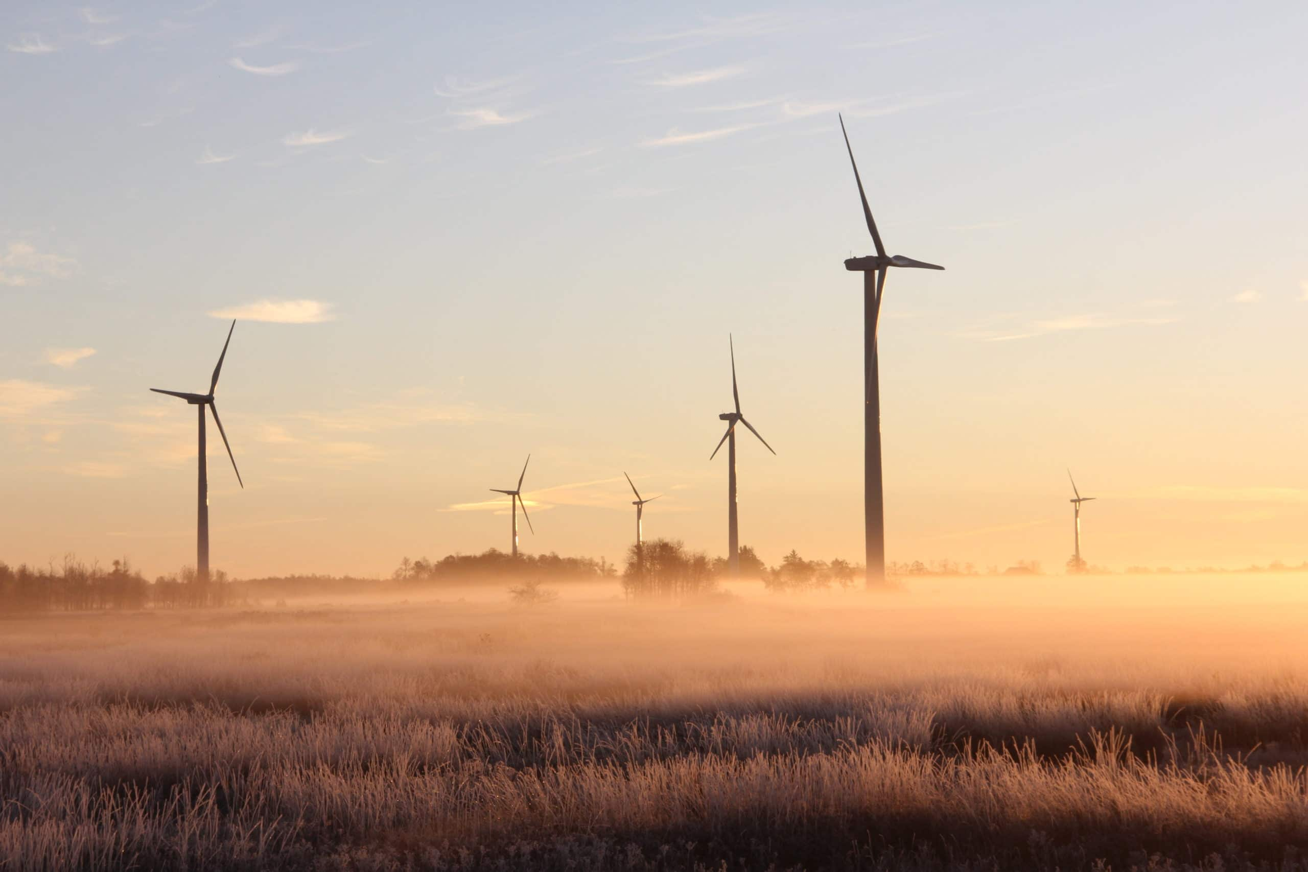 ESG Investing—What does it mean?